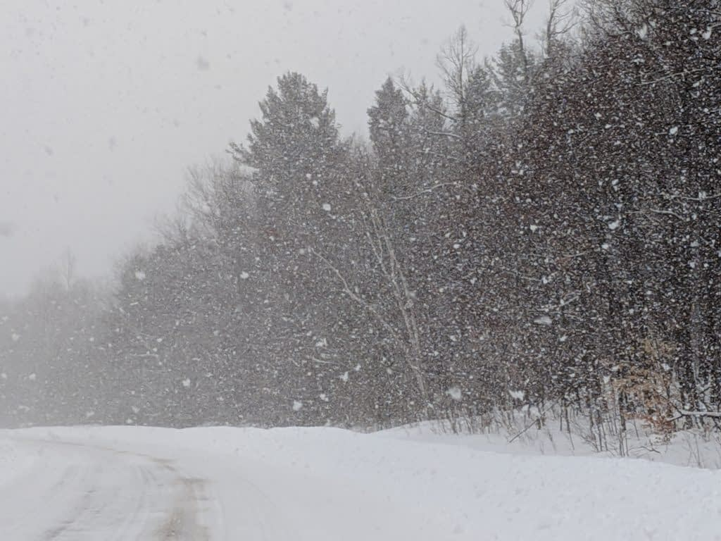 Opeong snowfall feb 14 2019