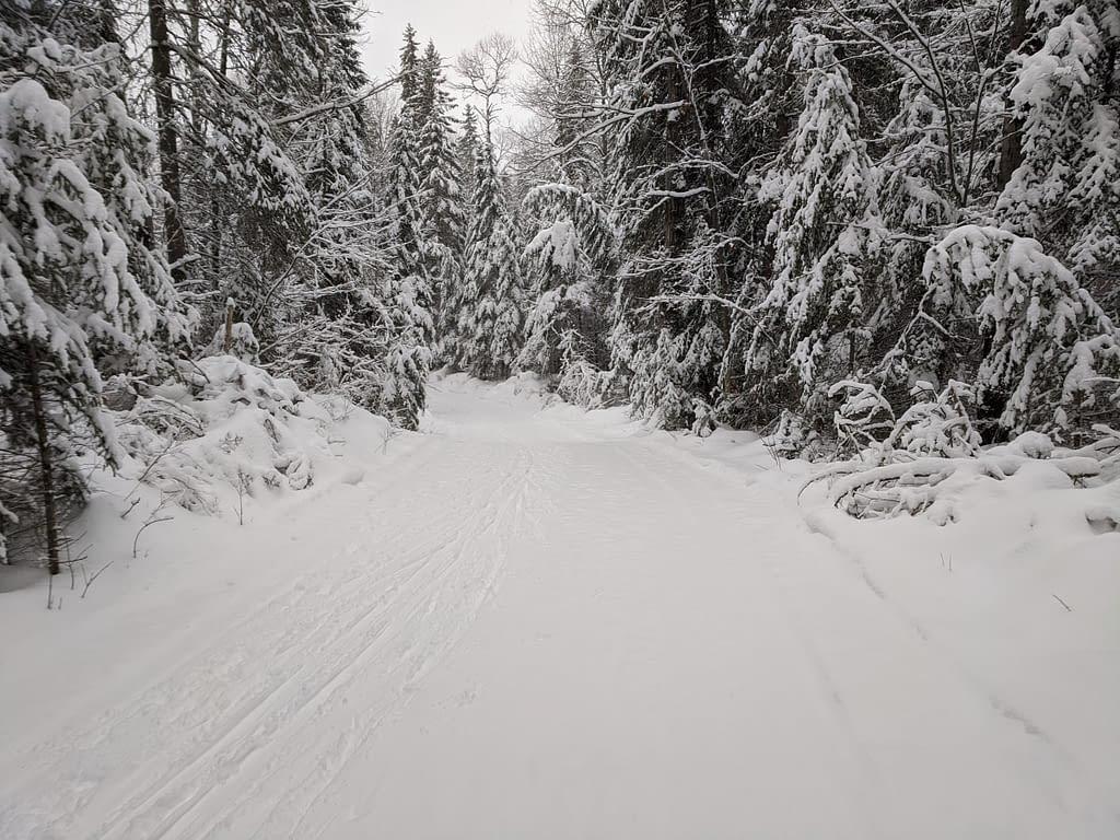 First ski in Alqonquin Dec 2021 (2)