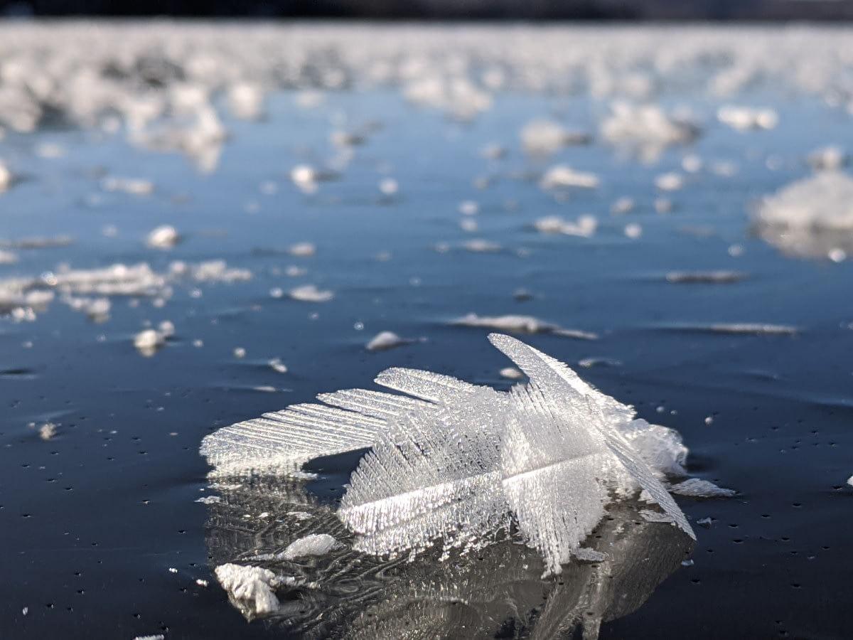 ice crystal Papineau Lake Dec 2020